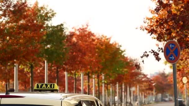 Taxi automne